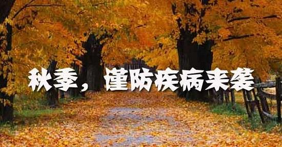 秋季风景幼儿简笔画